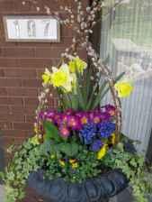 29 fabulous summer container garden flowers ideas
