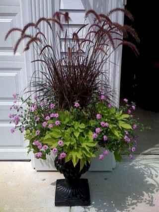 32 fabulous summer container garden flowers ideas