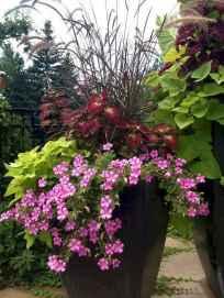 40 fabulous summer container garden flowers ideas
