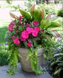 41 fabulous summer container garden flowers ideas