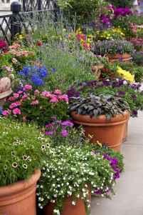 45 fabulous summer container garden flowers ideas