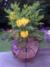 46 fabulous summer container garden flowers ideas