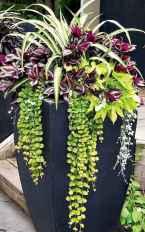 47 fabulous summer container garden flowers ideas