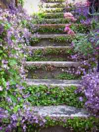 48 beautiful cottage garden ideas to create perfect spot