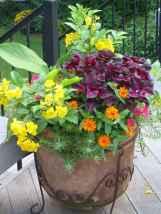 52 fabulous summer container garden flowers ideas