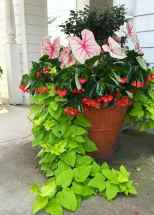55 fabulous summer container garden flowers ideas