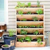 56 amazing diy vertical garden design ideas