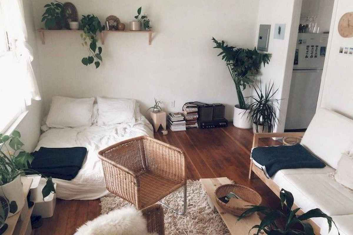 61 cheap and easy first apartment decorating ideas on a budget