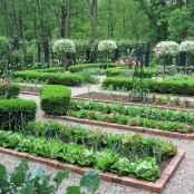63 affordable backyard vegetable garden design ideas
