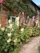 63 beautiful small cottage garden ideas for backyard inspiration