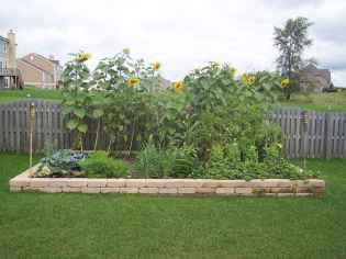 66 affordable backyard vegetable garden design ideas