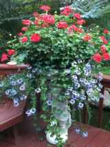 71 fabulous summer container garden flowers ideas