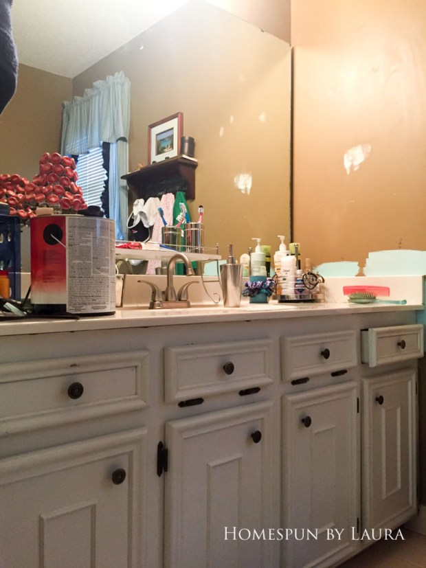 Master Bathroom Refresh: The Before | Homespun by Laura