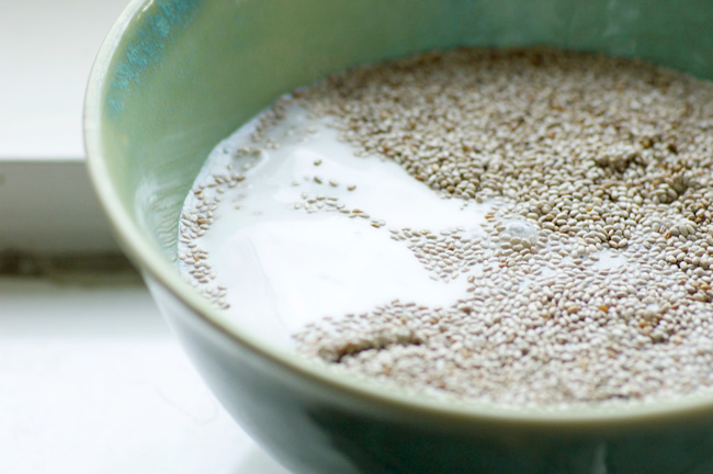 Homespun Capers - Classic Vanilla Chia Pudding