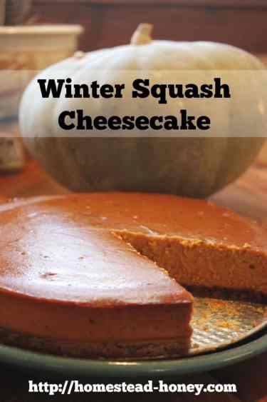 Winter Squash Cheesecake