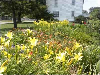 The Budget newspaper, Amish newspaper, homesteading