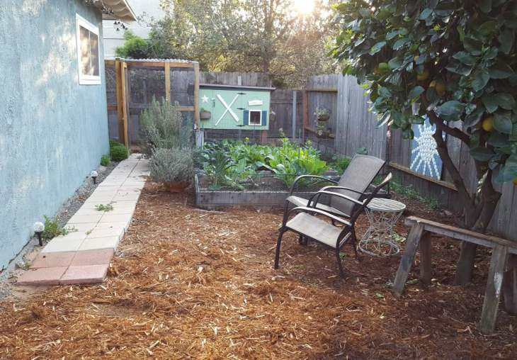 Two small raised garden beds, low to the ground, in front of a chicken coop.