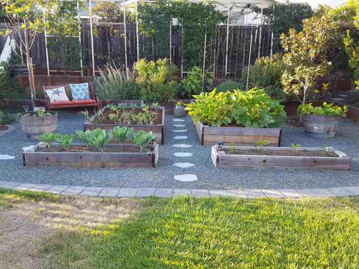 Several raised garden beds surrounded by gravel, where the grass used to be. On the north side of the garden beds are a series of trellises and taller plants, in a location that won't block the best sun exposure from the south.