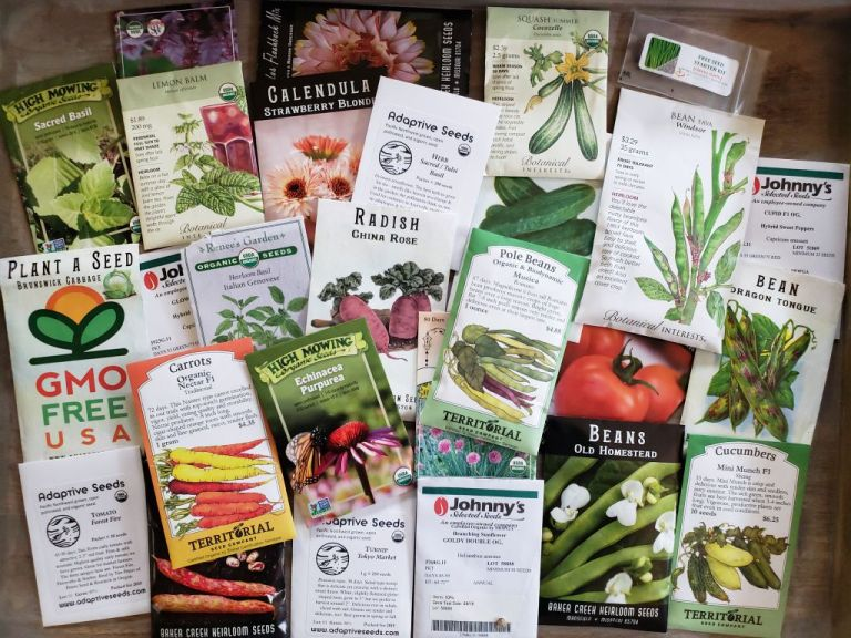 Dozens of color seed packages from many organic and non-GMO seed companies