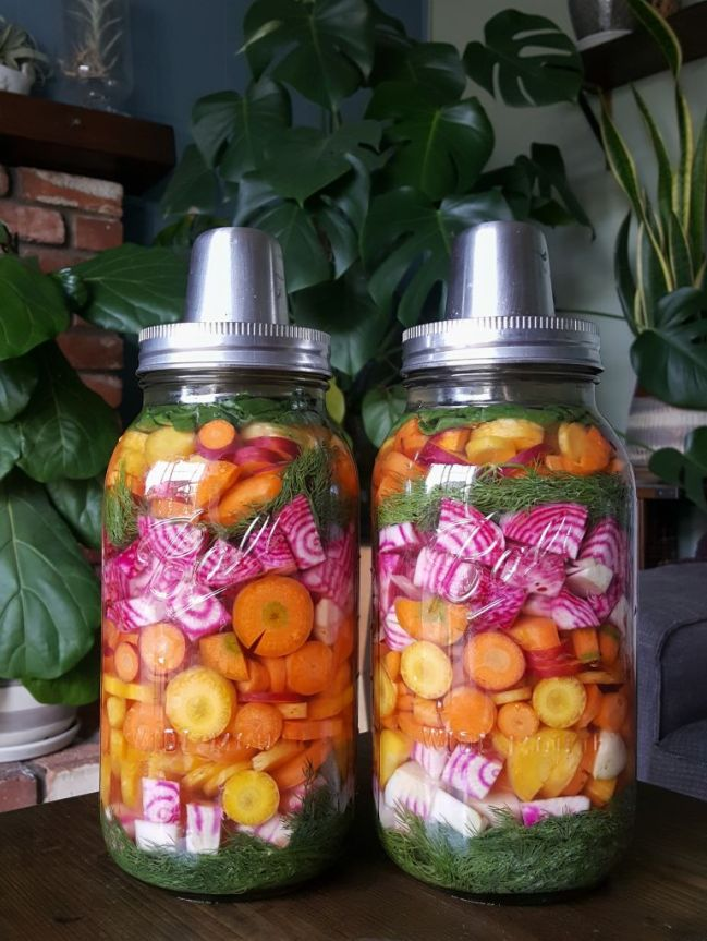 Two half-gallon jars full of homegrown produce. Using llacto-fermentation to preserve chioggia beets and rainbow carrots from the garden