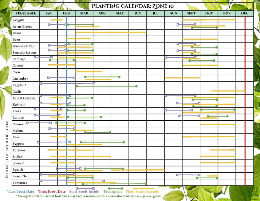 A diagram of a planting calendar for Zone 10, there are various vegetables labeled on one side of the diagram and each one has various color coded lines that are associated with when to start seeds inside, transplant, plant seeds outside, as well as the first and last frost dates.