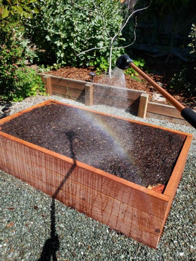 The final raised garden bed for this example, now completely full of soil, compost, and aeration additions. It is being watered, with drips of water running down the side of the bed, and a rainbow has appeared in the water spray.