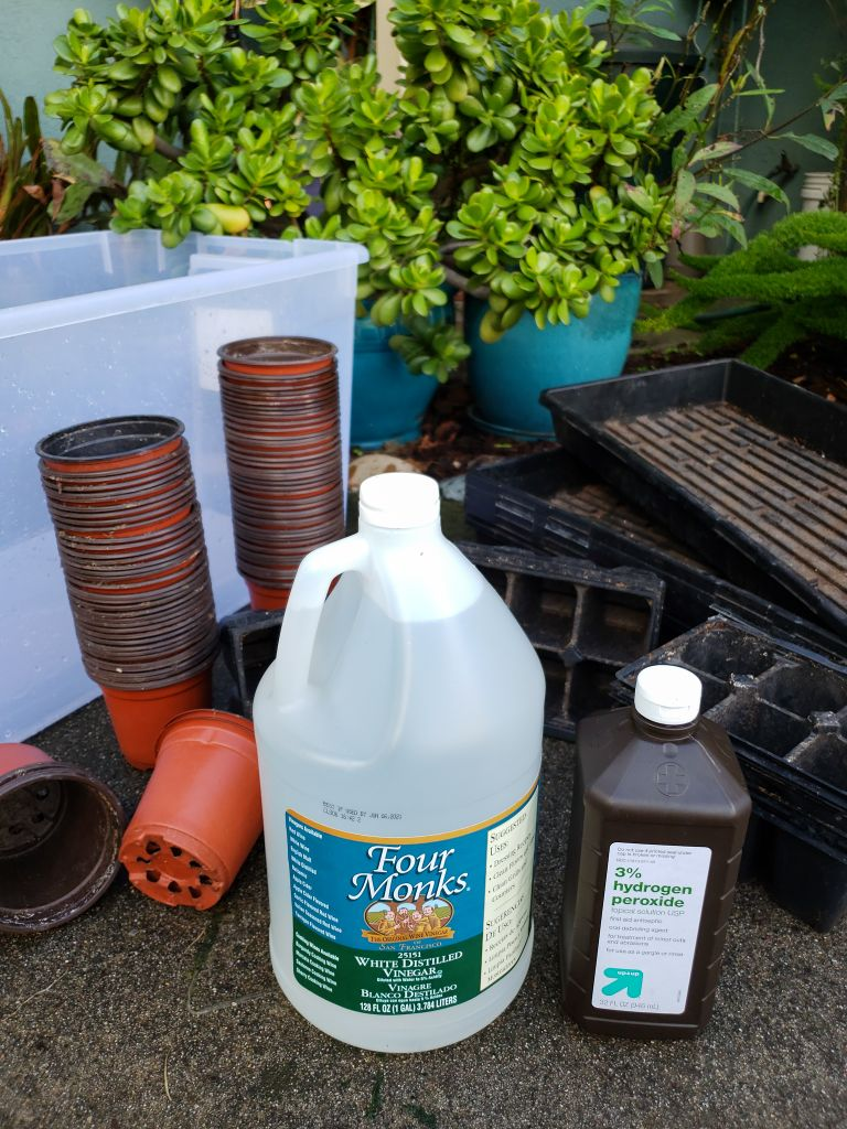 Sanitizing Seedling Containers & Garden Supplies ~ Homestead
