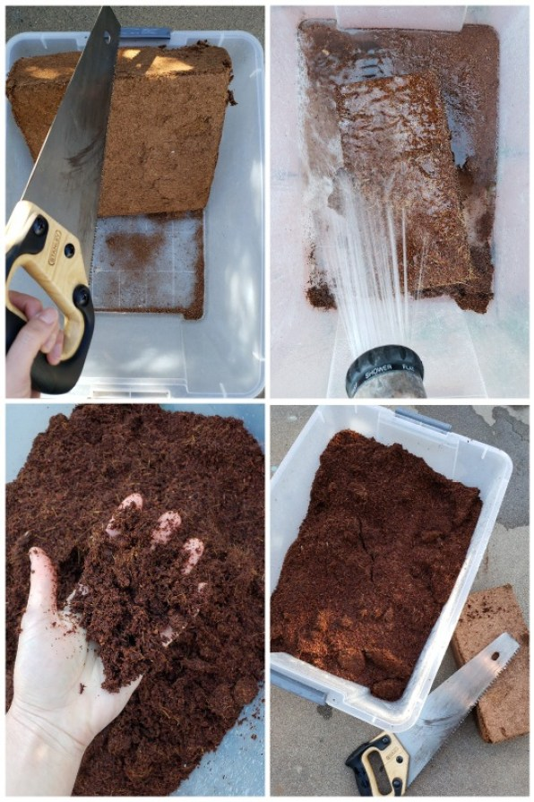 Four images, showing the process of sawing a large 10-pound brick of coco coir in half, putting that half in a clear plastic tote and spraying water on top, then it is being held in a hand, fluffy and wet.
