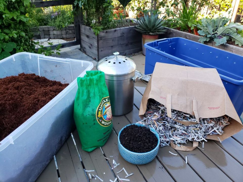 An image of worm bin supplies on a garden patio table. There is a plastic tote bin full of brown fluffy rehydrated coco coir, a bag of compost worms, a stainless steel crock that holds food scraps, a pile of shredded newspaper, and a large empty bin, that will become the new worm bin.