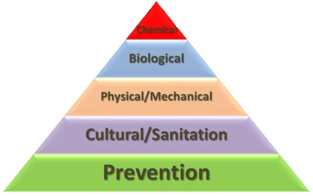 A triangle image, with 5 levels, like a food pyramid. The first, largest bottom section of the pyramid says prevention. Then going up, the next four sections say Cultural/Sanitation, Physical/Mechanical, Biological, then finally the smallest tip is Chemical