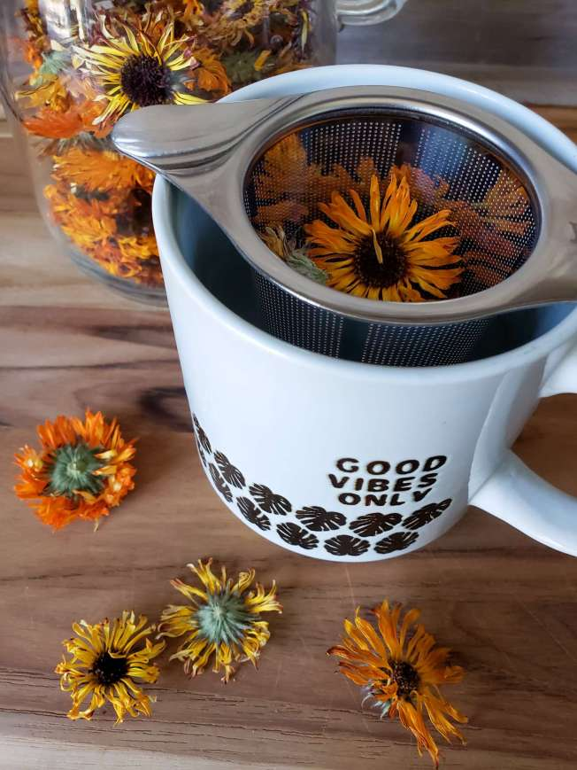 """A mug that reads """"good vibes only"""" on the side, with a stainless steel tea infuser perched inside. Several dry calendula heads are inside the infuser, along with laying around the base of the tea mug and in a jar in the background."""
