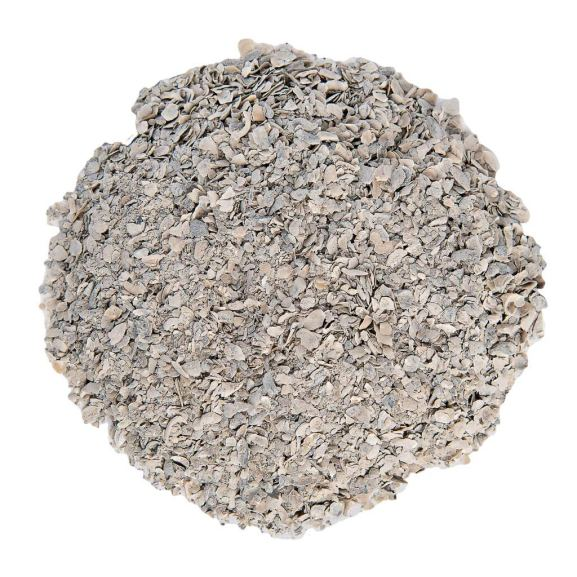 An image of a pile of crushed flaked oyster shells with a white background.