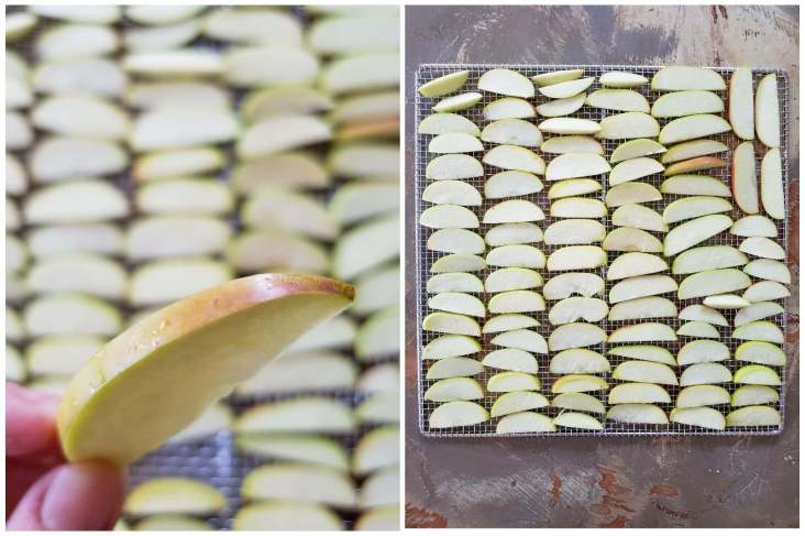 A two way image collage, the first image shows an index finger and thumb holding a slice of apple, it is displayed to show the thickness of the slice. The background is unfocused but you can see many more slices of apple neatly placed on stainless steel drying racks. The second image is a stainless steel drying rack that is full of sliced apples neatly and evenly spaced.