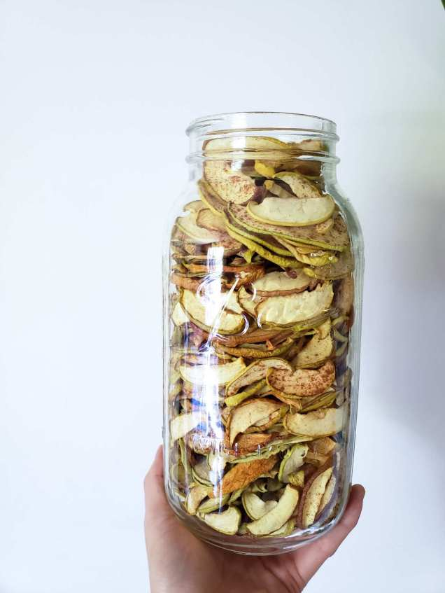 A hand holds half gallon mason jar from the bottom full to the top with sliced dried apples sprinkled with cinnamon. The background is plain white.