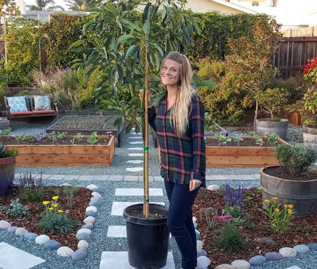 DeannaCat standing with a potted avocado tree in the Homestead and Chill gardens, about to plant the tree