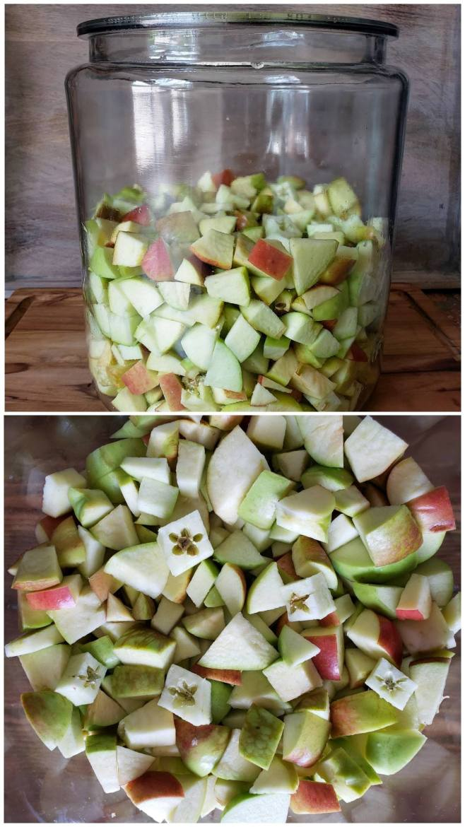 A two way image collage, the first image shows a 2 gallon glass crock that is half full of apple chunks. The crock sits atop a wooden cutting board. The second image shows a close up of the inside of the crock which reveals the apples cut in fairly similar sized chunks, some of the apples still have there seeds and core because when making apple cider vinegar this is just fine and even encouraged.