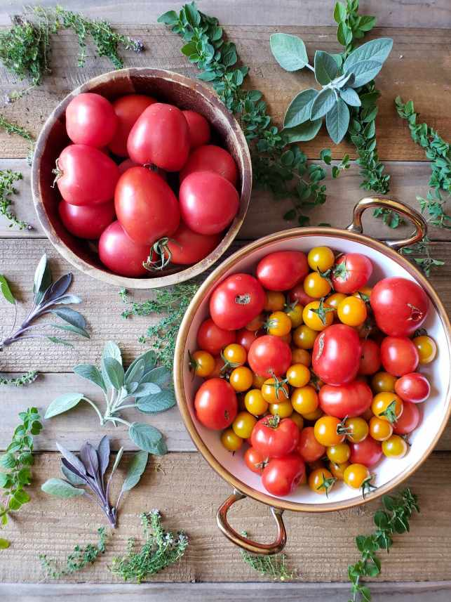 An image of two bowls of tomatoes, one is a white ceramic bowl with copper lining along the rim with handles and the other is a wooden bowl, they are set diagonally from each other on a barn wood table. The white bowl is full of orange cherry tomatoes and various types of smaller deep red tomatoes. The brown bowl has larger tomatoes in it, some more oblong in shape and some more round. The colors range from deep red to pink. Surrounding the bowls are various sprigs of fresh herbs, ranging from green and purple sage, thyme, and oregano. It is the ingredients for sun dried tomatoes.