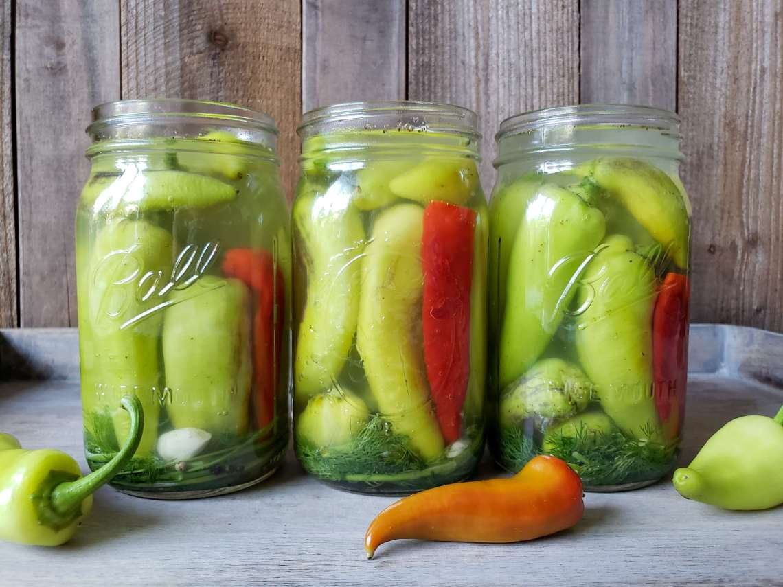 Quick Easy Refrigerator Pickled Peppers Recipe Homestead And Chill