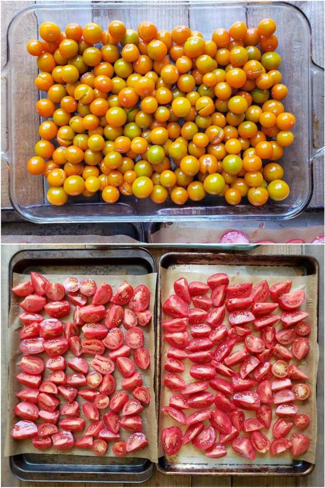 A two way image collage, the first image shows the orange Sungold tomatoes in a large glass baking dish, there are quite a few tomatoes so they are two to three tomatoes deep in certain places. The second image shows the various red tomatoes cut into wedges and halves laid out single layered on two baking sheets lined with parchment paper.