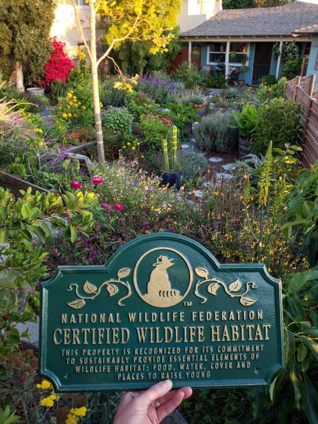 DeannaCat is holding a National Wildlife Federation Certified Wildlife Habitat placard. Beyond the placard is a sea of flowering perennial and annual plants, vegetables, trees, shrubs, vines, and cacti. The colors range between all that can be found in the rainbow as well as colors in between. This can be achieved when one chooses to remove grass.