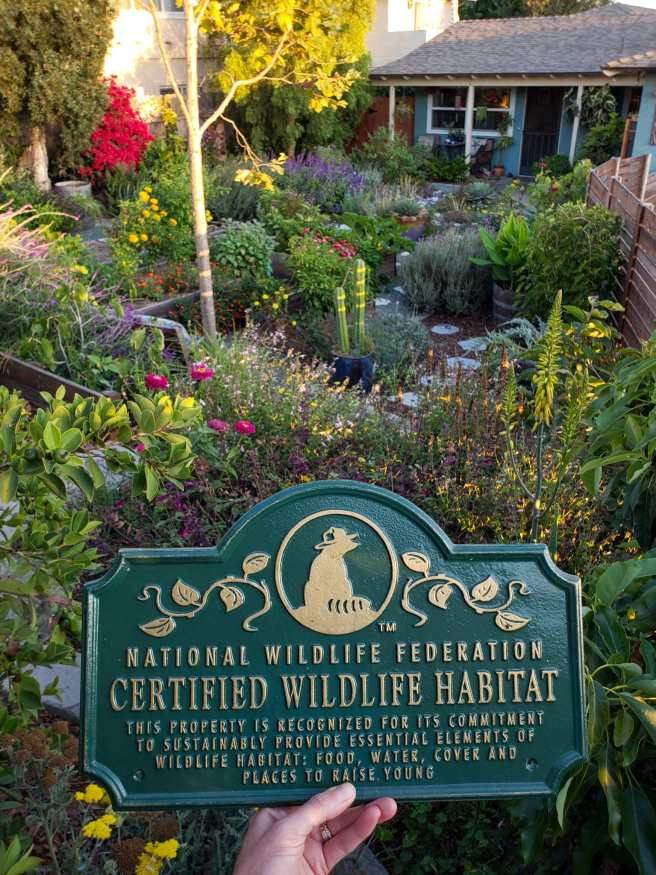 A hand is holding a National Wildlife Federation Certified Wildlife Habitat plaque in front of a view of the front yard garden. There isn't a lot of open space with many plants for pollinators, raised beds for vegetables, shrubs, and trees spaced throughout the area.