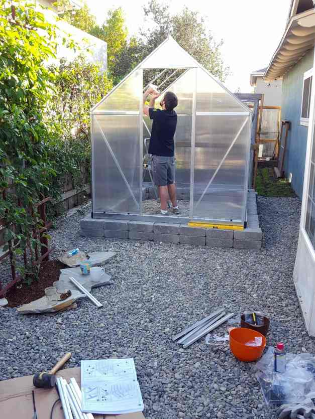 A hobby greenhouse is in the process of being constructed. There is a block foundation in which the structure is sitting on, the house is made of a metal frame with plastic sheet siding. A man is inside the structure, working on the inside of the frame, at least three panels are visibly missing from on side of the roof, though it is almost completed. There is gravel surrounding the structure while smaller pea gravel is used for the floor of the house. There are miscellaneous parts, tools, and the owners manual of the greenhouse model laid out in the foreground.