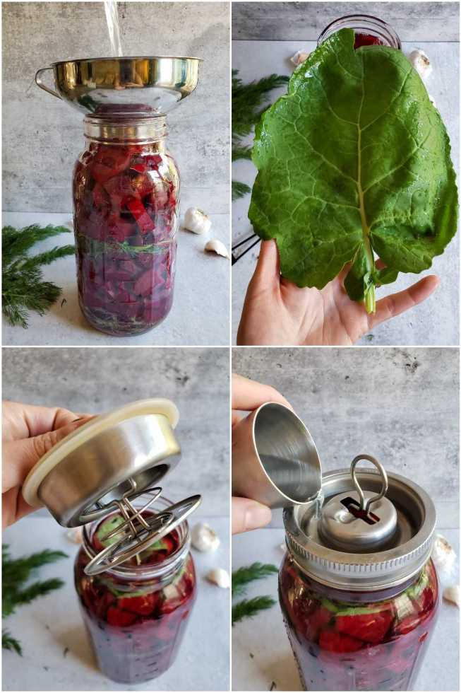 A four way image collage, the first image shows a half gallon mason jar full of beets, layered with dill and garlic. The jar has a stainless steel canning funnel on top of it and a stream of brine is flowing through the funnel, into the jar. The second image shows a hand holding a leafy green, below the green, lies the jar, cloves of garlic and sprigs of dill. The third image shows a hand holding a stainless steel Kraut Source device lid above the jar. The  fourth image shows the jar with the Kraut Source lid on top of it. Part of the lid that creates an air lock is being used to pour water into the moat of the lid.