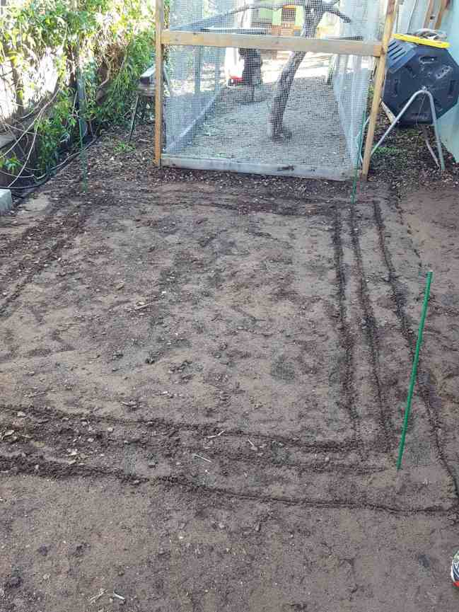 A rectangular space has been marked out with stakes in each corner and three different lines etched out in the ground in the shape of a rectangle. The chicken run is about a foot away from the outermost line.