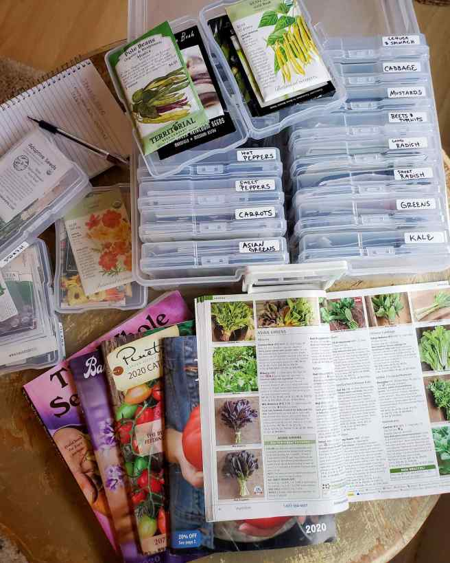 A collection of seed packs and seed catalogs arranged on a table. The seed packs are organized in individual plastic 4x6 inch cases that were originally intended for photographs. There is a small paper binder with a pen sitting on top of it and the seed catalogs are arranged as one would hold a hand of cards.