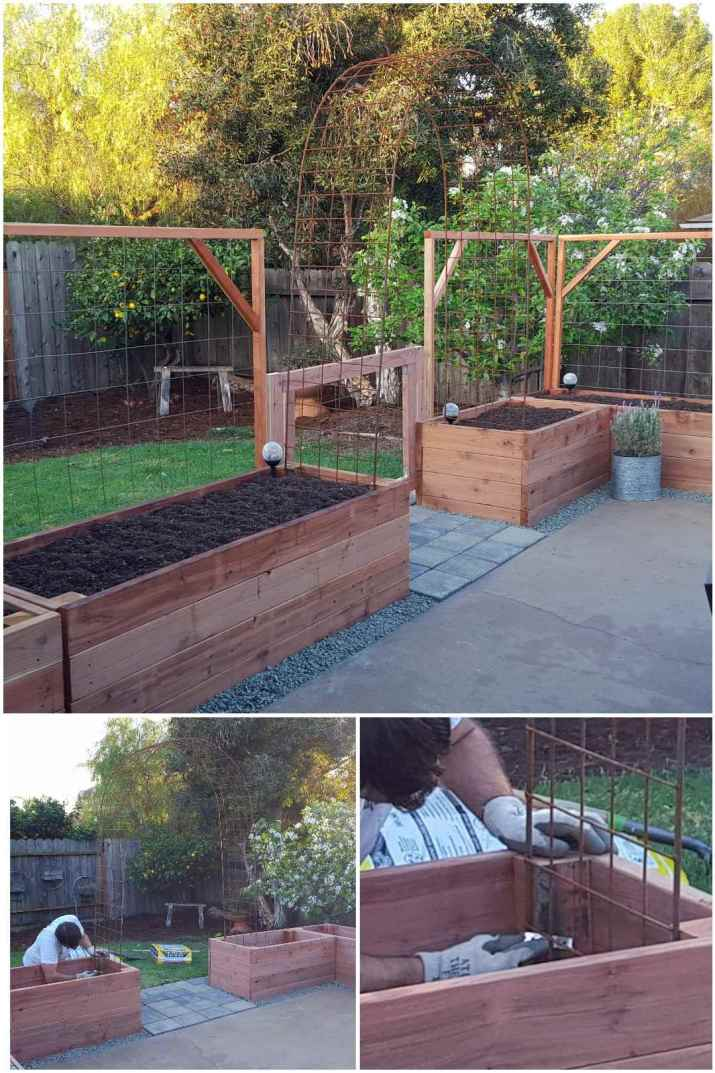 A three way image collage showing a metal archway being installed in between two raised garden beds. The first image shows newly constructed raised wooden garden beds with a trellis built on the backside of each bed. In the middle of the patio, where one would leave the patio to the back yard there is a concrete paver walkway in between two of the beds. In an end of each of the beds flanking the walkway is an end of an archway that is constructed over the top of the walkway. The second image a man drilling the end of the archway into an empty garden bed before it is full of soil. The third image shows a closeup of the man connecting the metal archway to the garden beds with L brackets and screws. The archway will act as a trellis, allowing a vining plant to grow over and on the archway.