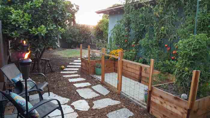 Raised garden beds in a U-shape up against the side of a blue house. There are tomatoes climbing up a trellis on the backside of the beds, reaching the roof of the house. There are chairs set up outside of the garden bed area with flagstone pavers creating a patio landing of sorts, two tiki torches are lit nearby as the sun is beginning to set.