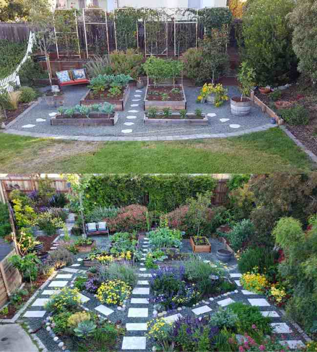 """A before and after two part image collage of the front yard garden. The first image shows grass in the front half of the yard while the back half has gravel hardscape with lined paver pathways. There are plants growing in the garden beds and around the perimeter of the yard. The trellises on the backside of the yard have vines growing up them yet they are still somewhat sparse in vegetation due to them being fairly new. There is also a white picket fence along the left side of the image. The second image is the same as before only taken a couple years later. The front half of the yard is now gravel hardscape with stone lined walkways, there are flowering perennial plants planted in the ground in river rock lined """"islands"""". All of the plants in the yard have continued to grow and are more lush and full of flowers than before. The left section of the yard has been redone by removing the white picket fence and angling a new fence further out to create more square footage of space. There is a new stone terraced corner that is planted out with perennials, annuals, and fruit trees."""