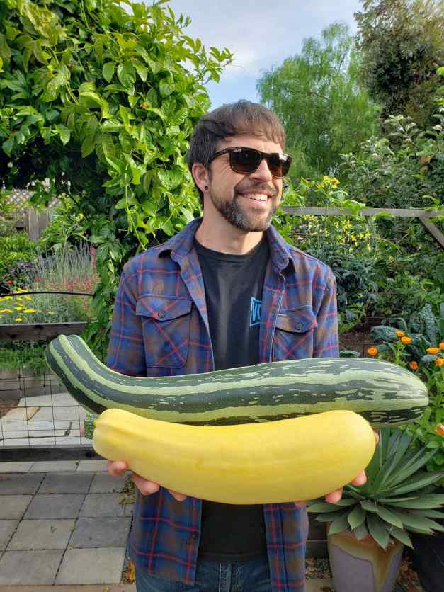 Aaron is holding two giant summer squash using his hands and part of his arms, much like one would carry a bundle of firewood. One is a yellow variety and the other is a cocozelle variety that is green and light green striped. There are numerous trees, shrubs and flowering plants in the background, such as red salvia, yellow yarrow, purple verbena, and marigolds to name a few. Aaron is wearing sunglasses, a blue and red striped flannel with a black shirt underneath.