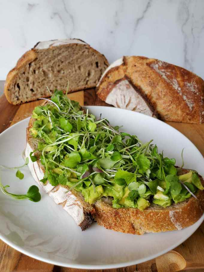 A slice of sourdough bread is shown on a white ceramic plate. The bread has a layer of avocado on the bottom with a bed of microgreens piled o  top. There is the remaining loaf of bread. Cut in half and sitting in the background behind the featured snack.